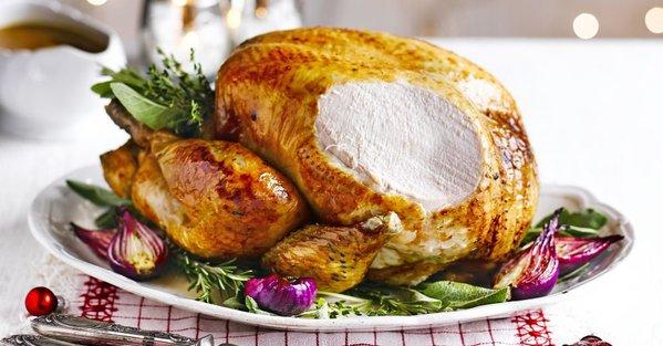 turkey-2-.jpg